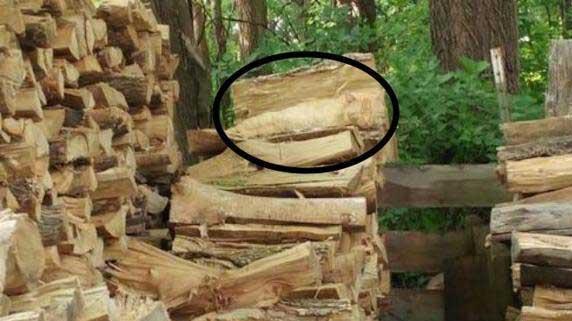 reto-redes-sociales-madera